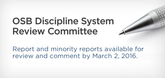 Discipline System Review Committee