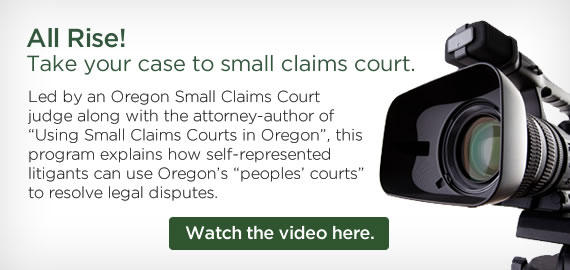 Small Claims Court Video